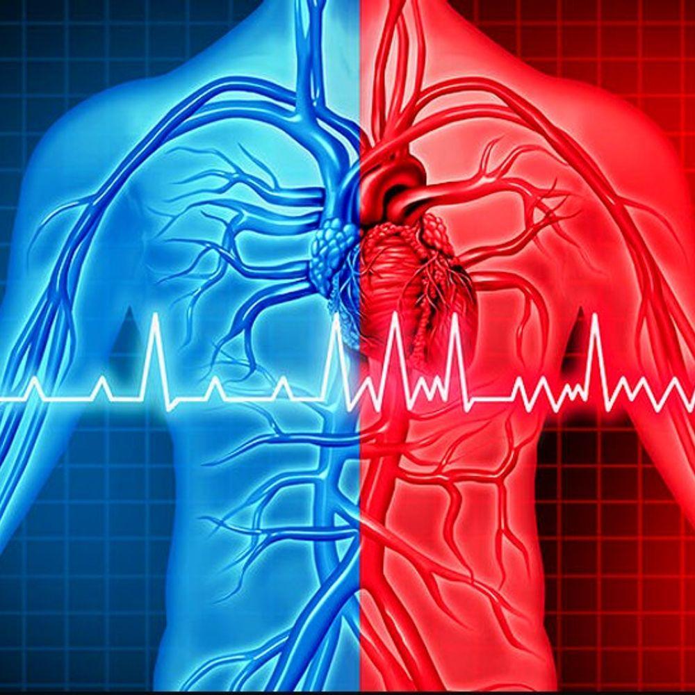 दिल के मरीजों का इलाज आसान करने की कोशिश:घटती-बढ़ती धड़कनों का 10 सेकंड में इलाज करेगी बैलून डिवाइस, सर्जरी के बाद 24 घंटे में मरीज हो जाएगा डिस्चार्ज