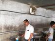 दूध में से क्रीम निकालकर, उसमें रिफाइंड मिलाकर तैयार कर रहे थे मावा मध्य प्रदेश,Madhya Pradesh - Money Bhaskar