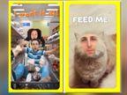 स्नैपचैट ने जारी किया कौमियो फीचर, वीडियो और जिफ में अपना चेहरा लगा सकेंगे यूजर|टेक,Tech - Dainik Bhaskar