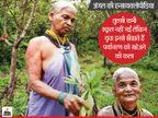 जंगल की एन्सायक्लोपीडिया कही जाती हैं 1 लाख से अधिक पौधे लगाने वाली 72 साल की तुलसी गौड़ा|लाइफस्टाइल,Lifestyle - Dainik Bhaskar