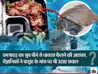 कोरोनावायरस के मरीजों को खिला रहे नरम कवच वाला कछुए का मांस, दावा- इसके पोषक तत्व पीड़ितों के लिए फायदेमंद|लाइफ & साइंस,Happy Life - Dainik Bhaskar