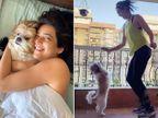 डॉगी के साथ खेलती दिखीं करिश्मा तन्ना, वीडियो शेयर कर लिखा- मैंने अपनी ओर से पूरी कोशिश की|बॉलीवुड,Entertainment - Dainik Bhaskar