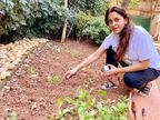 क्वारैंटाइन होकर घर में मैथी-टमाटर लगा रहीं जूही चावला, सोशल मीडिया पर लिखा- देखते हैं क्या होता है|बॉलीवुड,Bollywood - Dainik Bhaskar