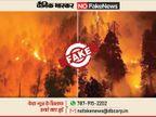उत्तराखंड के जंगलों की आग के नाम पर वायरल हो रही सालों पुरानी तस्वीरें, सरकार ने ही बताया भ्रामक|फेक न्यूज़ एक्सपोज़,Fake News Expose - Dainik Bhaskar