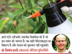 ब्रिटिश वैज्ञानिकों ने तैयार किया पॉलिमर स्प्रे, जो फफूंद को ब्लॉक करके पौधों की सतह पर टिकने से रोकेगा|लाइफ & साइंस,Happy Life - Dainik Bhaskar