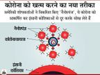 बाल से 30 गुना छोटे नैनोस्पंज के कण से कोरोना को खींचकर मारने की तैयारी, ये वायरस को सोख कर खत्म करेगा|लाइफ & साइंस,Happy Life - Dainik Bhaskar