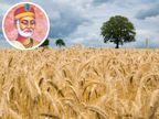जब तक सफलता मिल न जाए, तब तक किसी भी तरह की लापरवाही न करें, कई बार अंतिम पड़ाव पर काम बिगड़ जाते हैं|धर्म,Dharm - Dainik Bhaskar