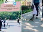 बतख को रोड़ क्रॉस कराने के लिए कैथलीन ने कंट्रोल किया सड़क का ट्रैफिक, सोशल मीडिया पर लोगों ने कहा इंसानियत की मिसाल|लाइफस्टाइल,Lifestyle - Dainik Bhaskar