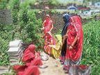 पौधरोपण के बाद महिलाओं ने बांधी राखी