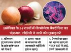 अब लाल प्याज से फैल रहा संक्रमण, अमेरिका के 34 राज्यों में संक्रमण फैला; सीडीसी ने खास तरह के प्याज को फेंकने की एडवाइजरी जारी की|लाइफ & साइंस,Happy Life - Dainik Bhaskar