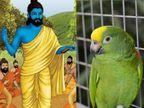 उपदेश सुनने और याद करने से हमारा जीवन नहीं बदल सकता, संत ने एक तोते को बोलना सिखाया पिंजरा छोड़ दो, उड़ जाओ|धर्म,Dharm - Dainik Bhaskar