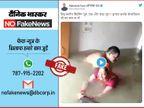 जलभराव में स्विमिंग करते दंपति के जिस वीडियो को दिल्ली में आई बाढ़ का बताकर शेयर किया जा रहा, असल में प्रयागराज का है|फेक न्यूज़ एक्सपोज़,Fake News Expose - Dainik Bhaskar