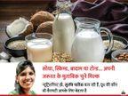 गाय के दूध से एलर्जी है तो ये 4 तरह के दूध डाइट में शामिल कर सकते हैं, ये दांत और हडि्डयों को मजबूत बनाते हैं और कोरोनाकाल में इम्युनिटी भी बढ़ाएंगे लाइफ & साइंस,Happy Life - Dainik Bhaskar