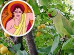 अगर विद्वान व्यक्ति बुरे लोगों के साथ रहेगा तो उसमें भी बुरे गुण आ सकते हैं, इसीलिए हमें अच्छे लोगों के साथ ही रहना चाहिए धर्म,Dharm - Dainik Bhaskar