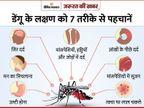 टाइगर मच्छर लोगों को कर रहा बीमार, डेंगू और कोरोना के कई लक्षण एक जैसे हैं, जानिए डेंगू से कैसे बचें|ज़रुरत की खबर,Zaroorat ki Khabar - Dainik Bhaskar