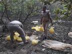 गोरखपुर में अवैध शराब के अड्डों पर आबकारी की रेड, 285 लीटर शराब नष्ट की गई; 6 आरोपियों खिलाफ केस दर्ज उत्तरप्रदेश,Uttar Pradesh - Dainik Bhaskar