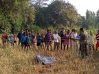 झाड़ियों के बीच से निकल अचानक सामने आया हाथी, पैरों से कुचल अधेड़ को मार डाला गुमला,Gumla - Dainik Bhaskar