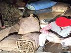90 किलो अफीम के डोडे के साथ लुधियाना निवासी गिरफ्तार, एनडीपीएस एक्ट के तहत केस दर्ज|हिमाचल,Himachal - Dainik Bhaskar