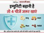सोंठ, तिल और गुड़ को मिलाकर लड्डू बनाएं, एक दिन में 150 ग्राम से ज्यादा मिठाई न खाएं|ज़रुरत की खबर,Zaroorat ki Khabar - Dainik Bhaskar
