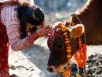 दीपावली से पहले सुख और समृद्धि की कामना से किया जाता है गोवत्स द्वादशी व्रत|धर्म,Dharm - Dainik Bhaskar