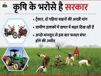 मुसीबत में सरकार को याद आ रहे हैं किसान, अर्थव्यवस्था को बचाने में किसानों की रहेगी महत्वपूर्ण भूमिका|बिजनेस,Business - Dainik Bhaskar