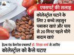 लहसुन, बादाम और फायबर वाले भोजन से घटेगा कोलेस्ट्रॉल और हृदय रोगों का खतरा, एक्सपर्ट की ये 5 बातें ध्यान रखें|लाइफ & साइंस,Happy Life - Dainik Bhaskar