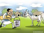 मध्यप्रदेश में गौधन संरक्षण के लिए 6 विभागों की गौ-कैबिनेट बनी, 22 नवंबर को पहली बैठक मध्य प्रदेश,Madhya Pradesh - Dainik Bhaskar