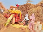 1 लाख 65221 किसान बेचेंगे धान पिछले साल से 15 हजार अधिक|बलौदाबाजार,Balodabazar - Dainik Bhaskar