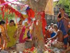 आंवला नवमी 23 नवंबर को, इस दिन की गई पूजा और दान का फल कभी खत्म नहीं होता|धर्म,Dharm - Dainik Bhaskar