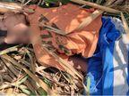 पिता नहीं दे पाया उधार के 7 हजार रुपए तो पड़ोसी ने उसके 7 साल के बेटे का गला दबाकर की हत्या गुजरात,Gujarat - Dainik Bhaskar