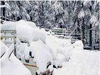 आज से प्रदेश में बारिश व बर्फबारी का अलर्ट, ऊना की रातें शिमला से भी ठंडी हुईं|शिमला,Shimla - Dainik Bhaskar