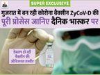 इस 'गुजराती वैक्सीन' पर दुनिया की नजर, हमारी सेफ्टी के लिए 24 घंटे काम कर रहे 300 वैज्ञानिक|गुजरात,Gujarat - Dainik Bhaskar