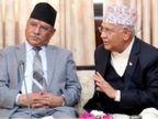 प्रचंड गुट ने प्रधानमंत्री ओली को NCP अध्यक्ष पद से हटाया, बोले- उन्होंने पार्टी के खिलाफ काम किया विदेश,International - Dainik Bhaskar
