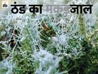 चूरू में 46 साल बाद दिसंबर की सबसे सर्द रात, प्रदेश में लगातार दूसरे दिन 4 शहरों का पारा माइनस में|जयपुर,Jaipur - Dainik Bhaskar