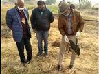 जिले में 10 कौओं की मौत,बर्ड फ्लू की जांच के लिए 5 के सैंपल भोपाल लैंब भेजे गए जैसलमेर,Jaisalmer - Dainik Bhaskar
