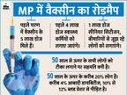CM शिवराज बताएंगे MP में 5 दिन में 4 लाख स्वास्थ्यकर्मियों को वैक्सीन लगाने का रोडमैप|मध्य प्रदेश,Madhya Pradesh - Dainik Bhaskar