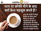 चाय-कॉफी से मिलने वाला कैफीन दिमाग को एक्टिव तो करता है लेकिन ब्लड प्रेशर भी बढ़ाता है, जानिए इसके फायदे-नुकसान|लाइफ & साइंस,Happy Life - Dainik Bhaskar
