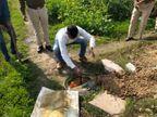 धौलपुर में हथकढ़ में इस्तमाल होने वाला 5 हजार लीटर वॉश नष्ट; 60 लीटर कच्ची शराब जब्त|भरतपुर,Bharatpur - Dainik Bhaskar