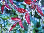 छत्तीसगढ़ में बारिश से बढ़ी ठंड, माउंट आबू में टूटा 15 साल का रिकॉर्ड, MP में चौथे दिन कोल्ड डे देश,National - Dainik Bhaskar