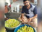 पिता की मौत के बाद बिजनेस छोड़ नींबू की बागवानी शुरू की, हर साल 12 लाख रु. कमा रहे मुनाफा|ओरिजिनल,DB Original - Dainik Bhaskar