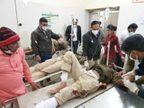 फिल्मी स्टाइल में तस्कर का पीछा करने के दौरान जीप पलटी, 5 पुलिसकर्मी घायल|जोधपुर,Jodhpur - Dainik Bhaskar