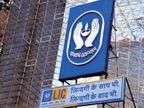 LIC के इंडिविजुअल सालाना प्रीमियम में 45% की गिरावट आई, इस दौरान बीमा इंडस्ट्री की ग्रोथ 8% रही|बिजनेस,Business - Money Bhaskar