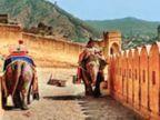 हेल्थ रिपोर्ट में 19 हाथी अनफिट, आमेर महल में सफारी पर रोक जयपुर,Jaipur - Dainik Bhaskar