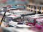50 लो फ्लोर बसें मिलीं, माह के अंत तक 50 और मिलेंगी|जयपुर,Jaipur - Dainik Bhaskar