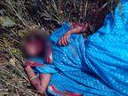 सरसों के खेत में मिली महिला की लाश, गला रेतकर की गई हत्या|झारखंड,Jharkhand - Dainik Bhaskar