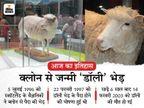 डॉली भेड़ की घोषणा, जिसे वैज्ञानिकों ने लैब में बनाया था; इसका नाम अमेरिकी सिंगर के नाम पर रखा गया था|देश,National - Dainik Bhaskar