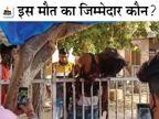 होर्डिंग लगाते समय हाइटेंशन लाइन की चपेट में आया युवक, लोहे की रेलिंग पर गिरा मजदूर; सरिया घुसने से मौके पर मौत|जोधपुर,Jodhpur - Dainik Bhaskar