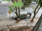 मुकेश अंबानी के घर के बाहर मिली कार हाजी अली जंक्शन पर भी 10 मिनट खड़ी थी, संदिग्धों ने एक महीने तक की थी रेकी|मुंबई,Mumbai - Dainik Bhaskar