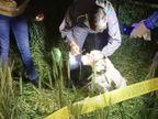खेत में मिला अर्द्ध नग्न अवस्था में शव, परिजनों ने गैंगरेप के बाद हत्या की जताई आशंका, पुलिस से झड़प के बाद किया पथराव, इंस्पेक्टर घायल|आगरा,Agra - Dainik Bhaskar