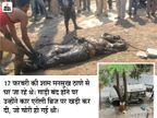 जिसकी कार में विस्फोटक रखा था, उस व्यापारी का शव मिला; पुलिस ने खुदकुशी का दावा किया पर मुंह पर बंधे थे 5 रूमाल देश,National - Dainik Bhaskar